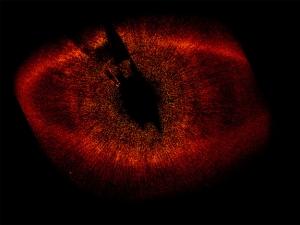 Газопылевой диск около звезды Фомальгаут на снимке Хаббла (space.com)