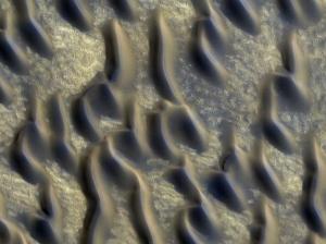 Изображение дюн в псевдоцветах (space.com)