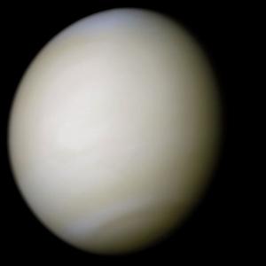 Венера (wikipedia.org)
