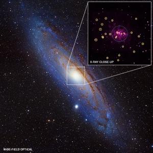 Черные дыры в туманности Андромеды (chandra.si.edu)