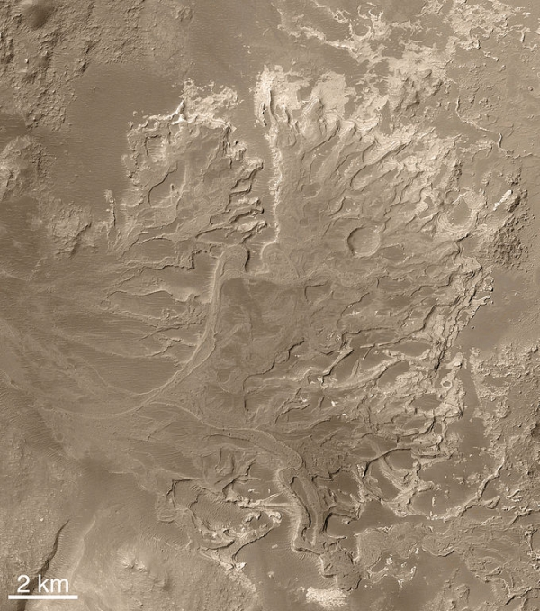 Дельта реки на Марсе (wikipedia.org)
