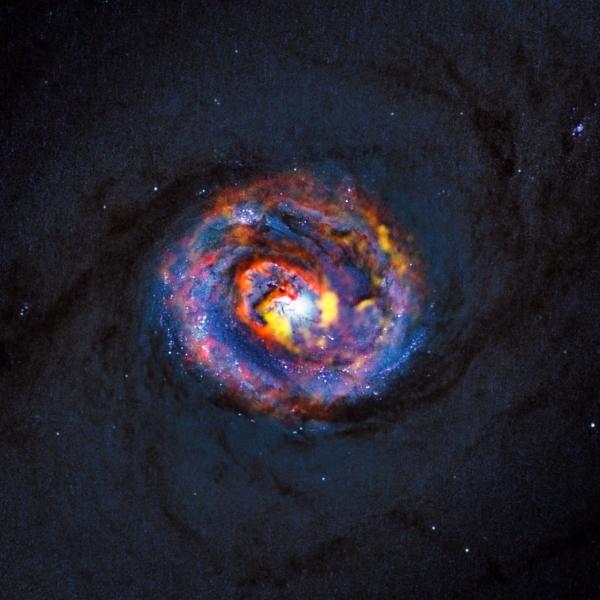 Снимок галактики NGC 1433 (eso.org)