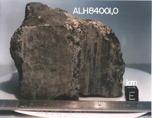 Метеорит ALH84001 (space.com)