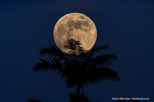 Луна в небе над Землей (space.com)