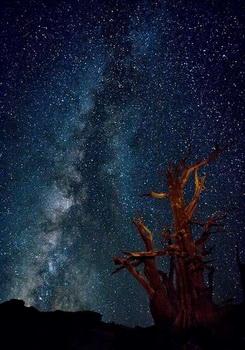 Загадочный Млечный путь (Изображение — 7photographyquestions.com