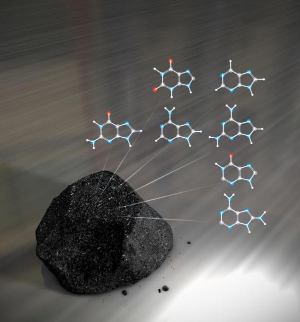В метеоритах содержится большое разнообразие азотистых оснований, важнейшей части ДНК (sciencedaily.com)