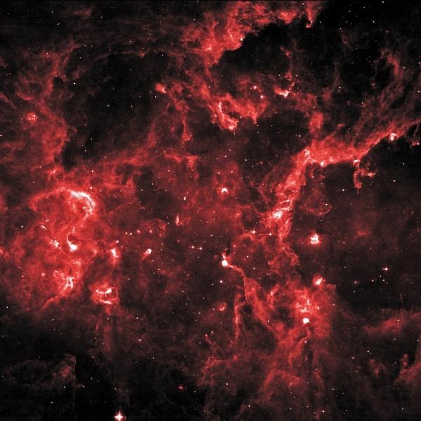 Инфракрасное изображение региона Лебедь. Яркие точки - места образования звезд (nasa.gov)